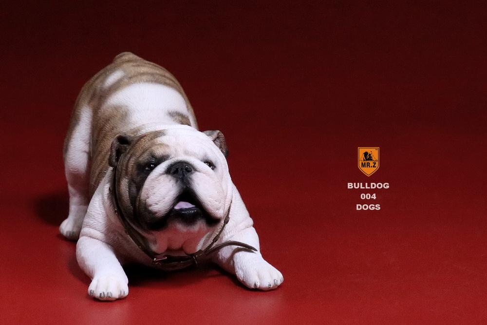 mrz-bulldog20
