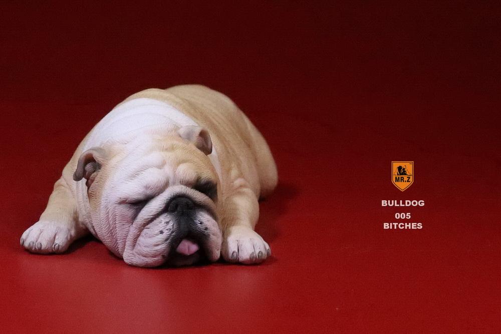 mrz-bulldog27