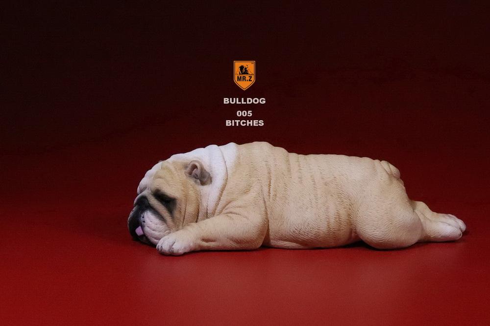 mrz-bulldog28