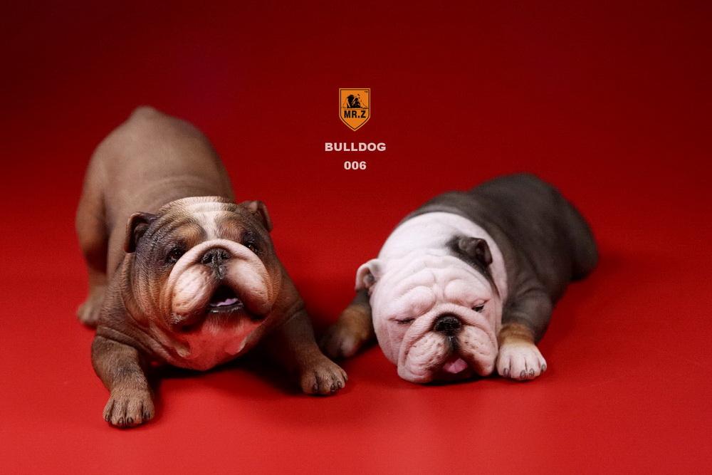mrz-bulldog30