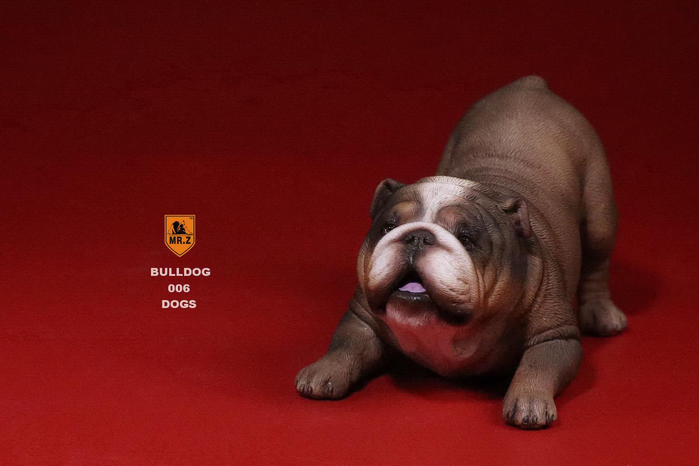 mrz-bulldog33