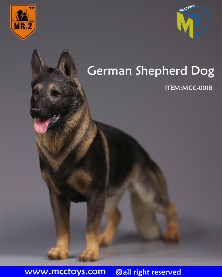 mrZ-shepherd09 German Shepherd Dog Reviews