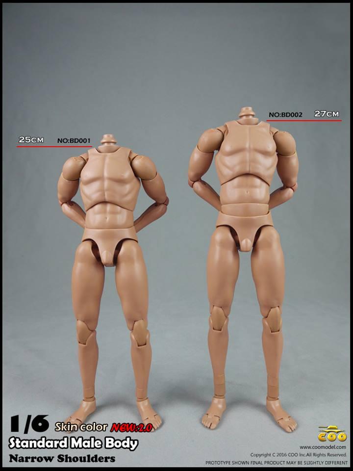 coo-body2-13