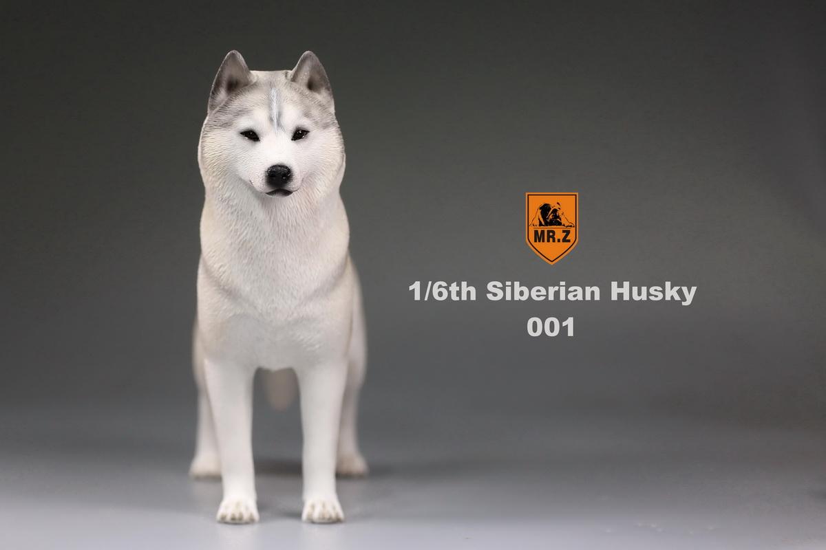 mrz-husky001