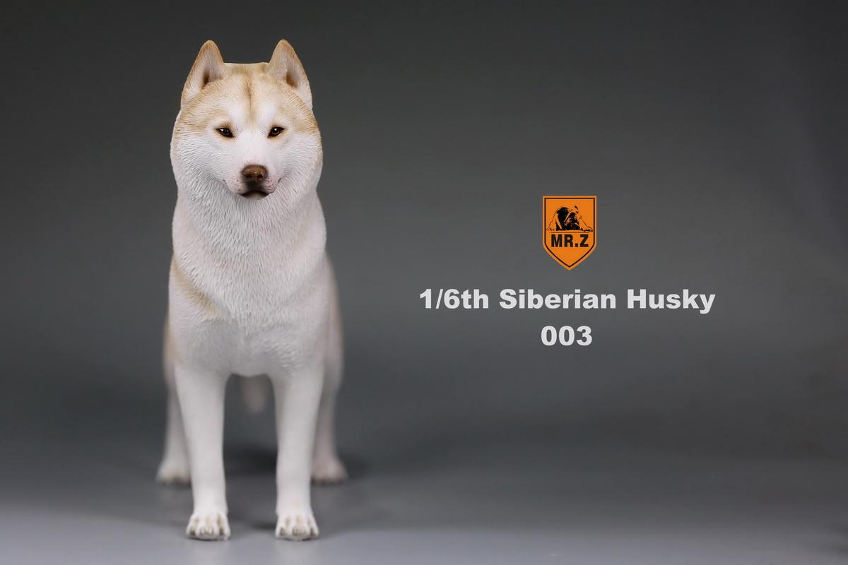 mrz-husky009