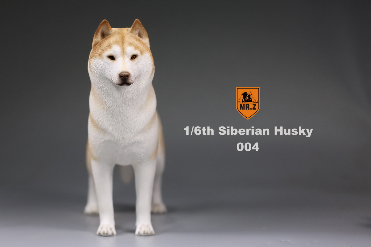 mrz-husky014
