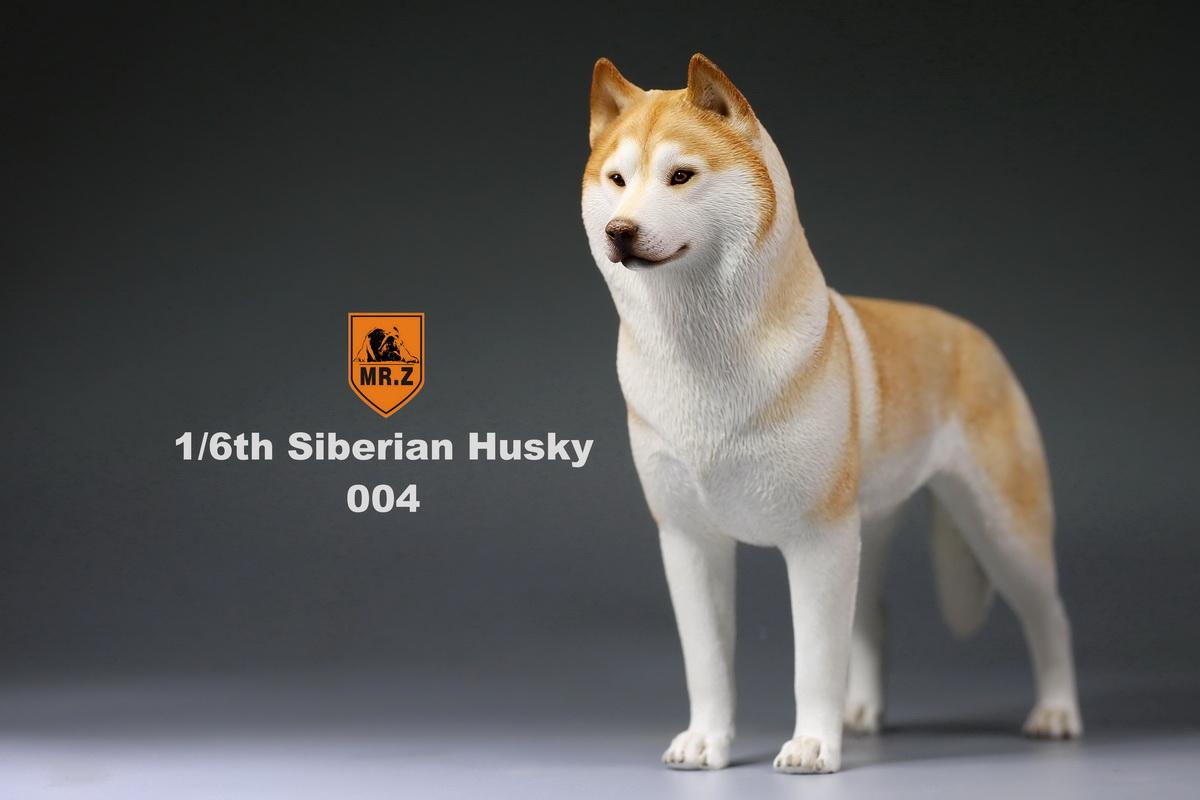 mrz-husky015