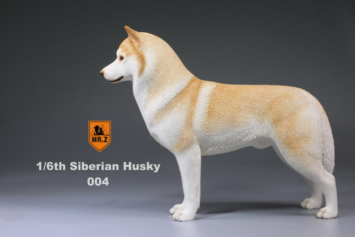 mrz-husky016