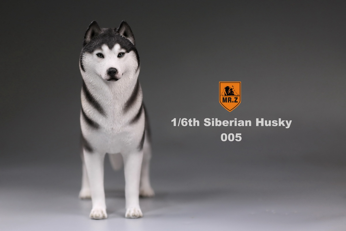 mrz-husky018