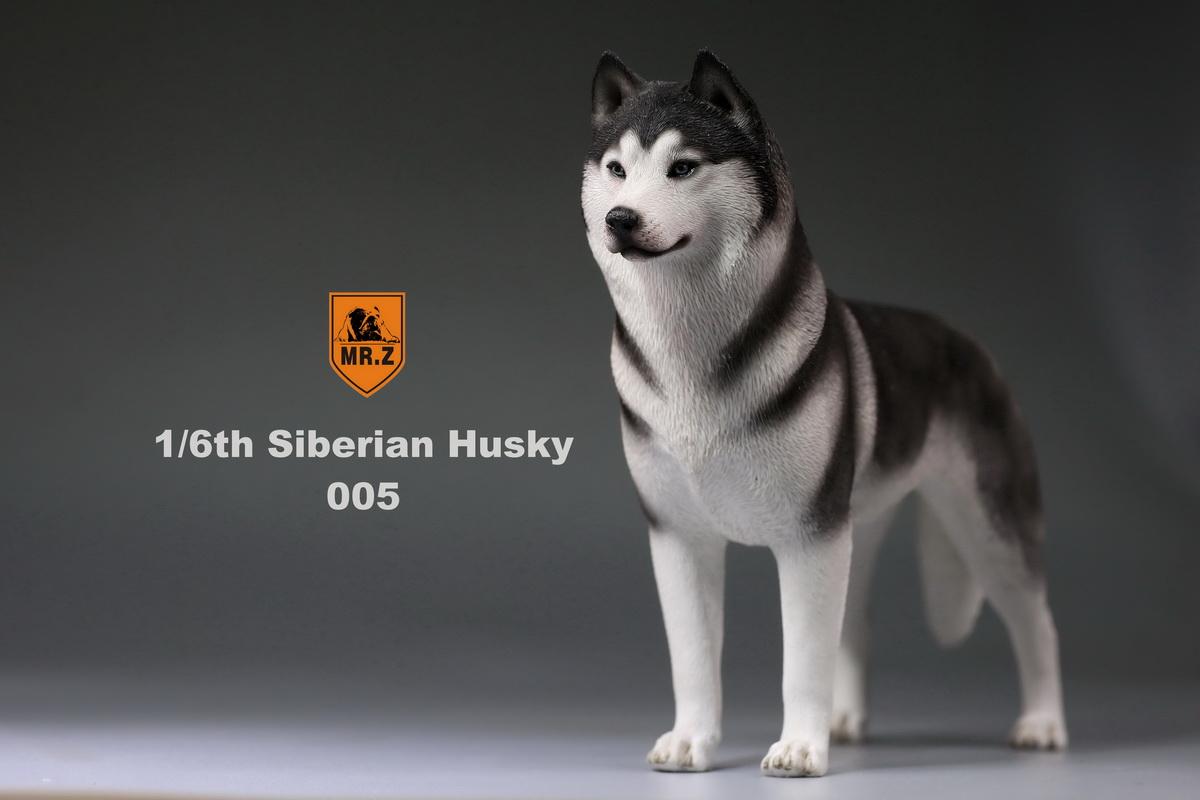 mrz-husky019