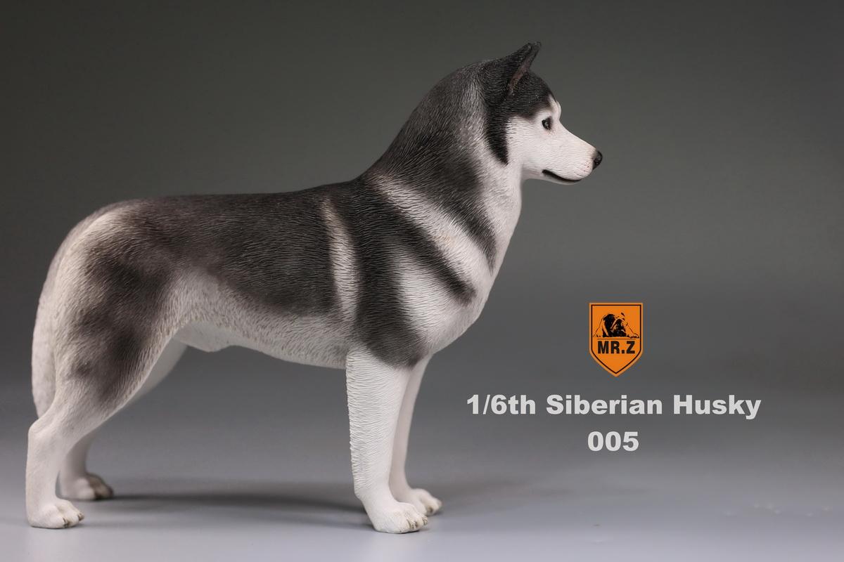 mrz-husky020