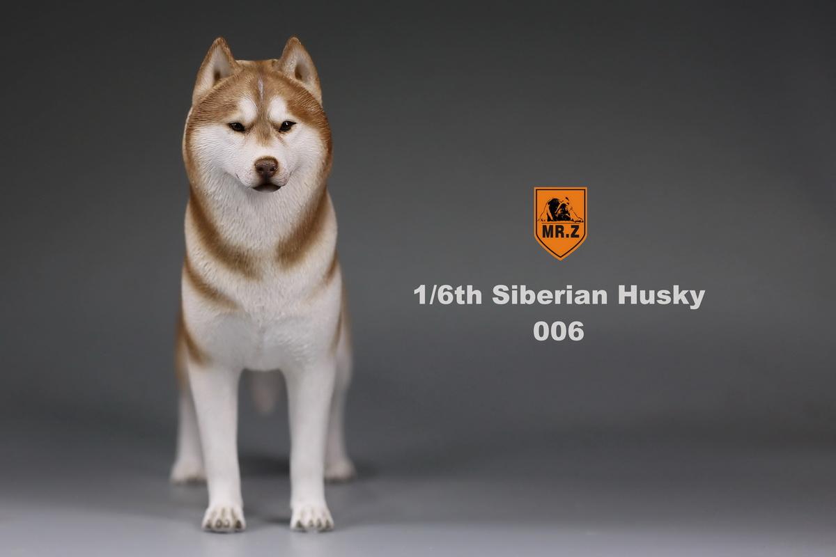 mrz-husky022