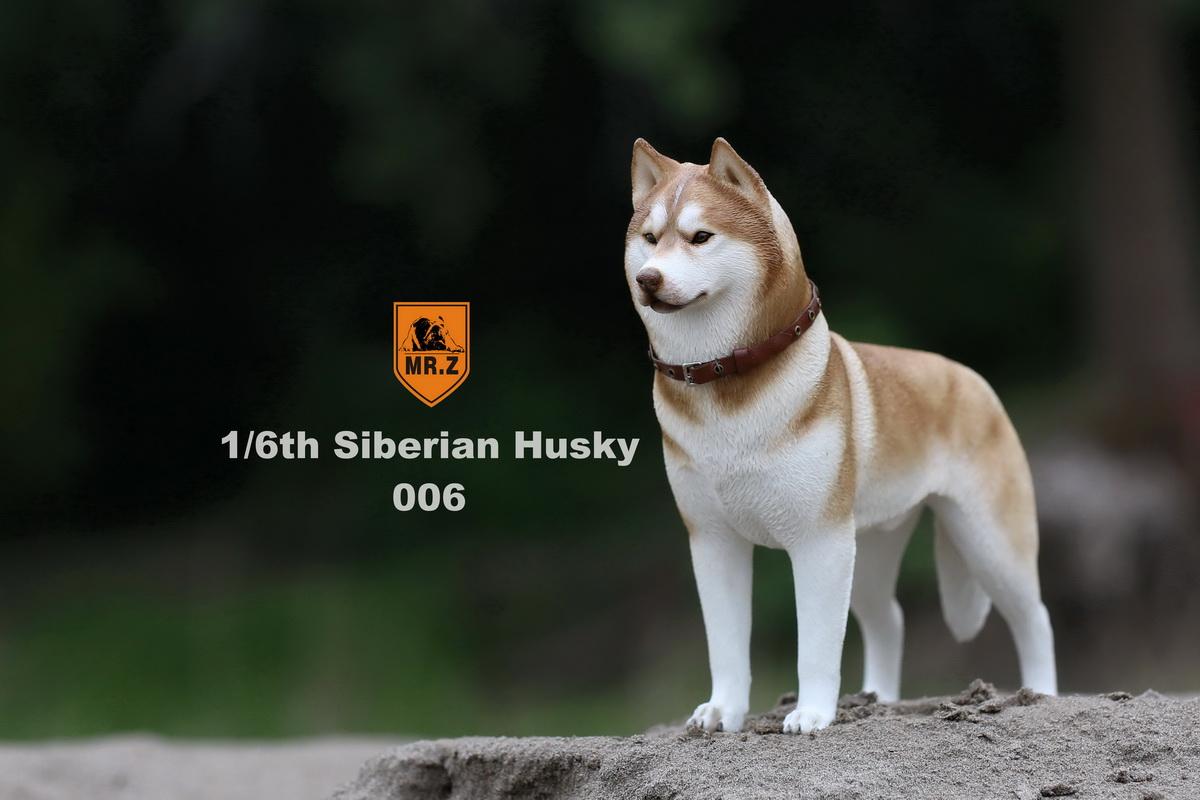 mrz-husky025