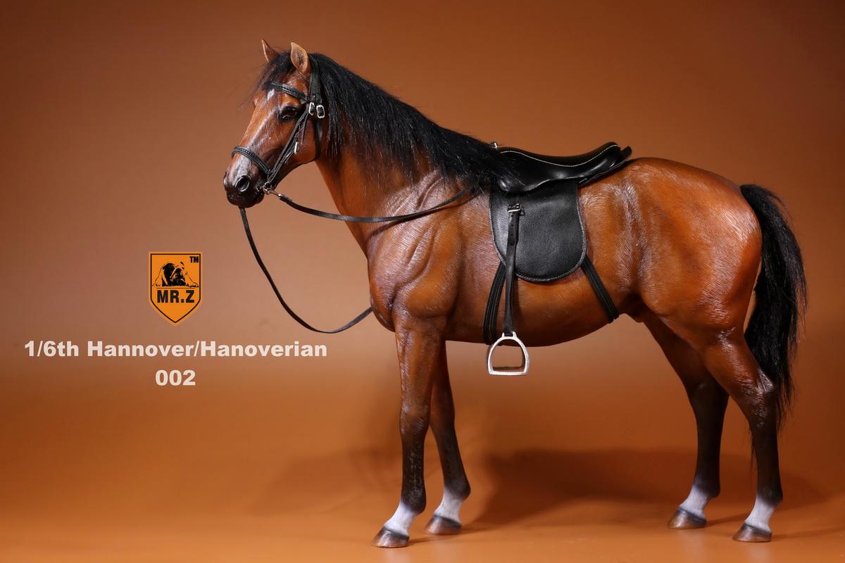 mrZ-horse04