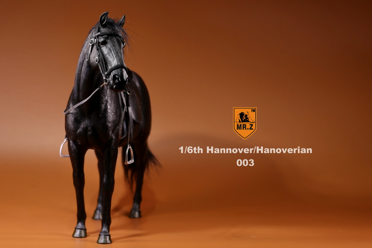mrZ-horse05