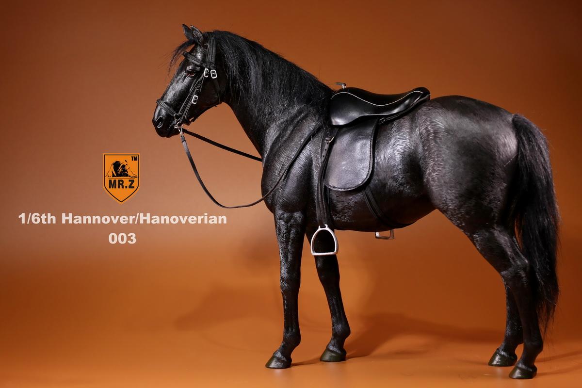 mrZ-horse06