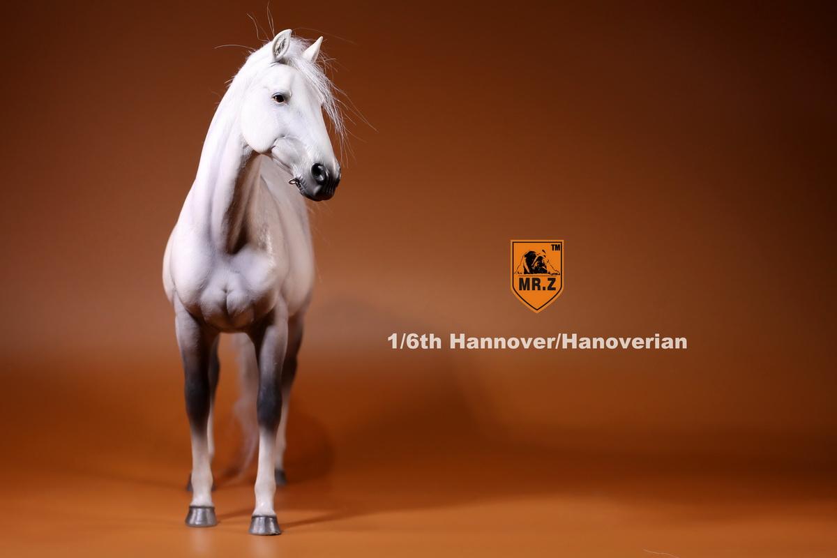 mrZ-horse12