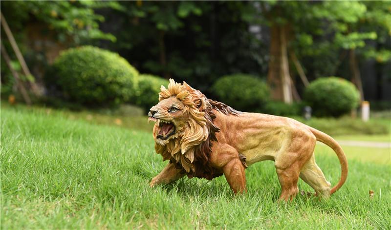 jxk-lion02