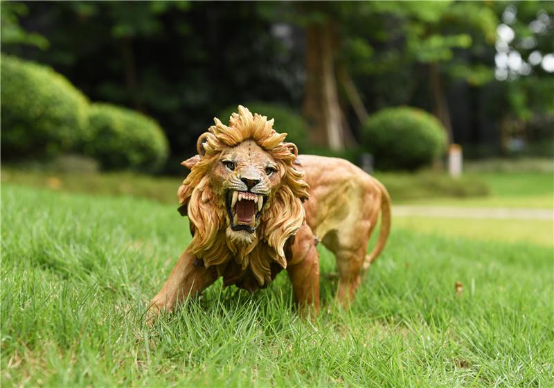jxk-lion03