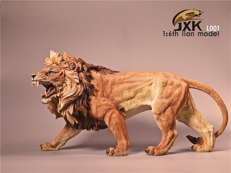 jxk-lion07