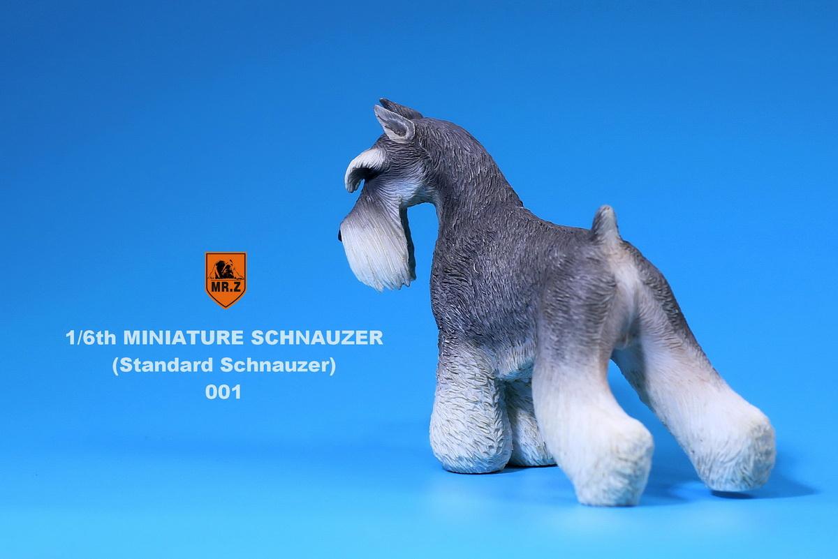 mrZ-schnauzer02