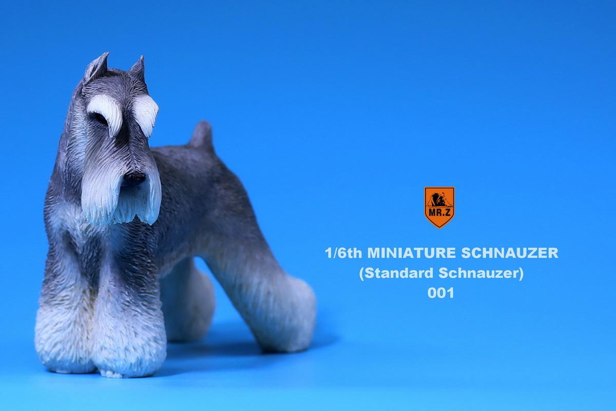 mrZ-schnauzer03