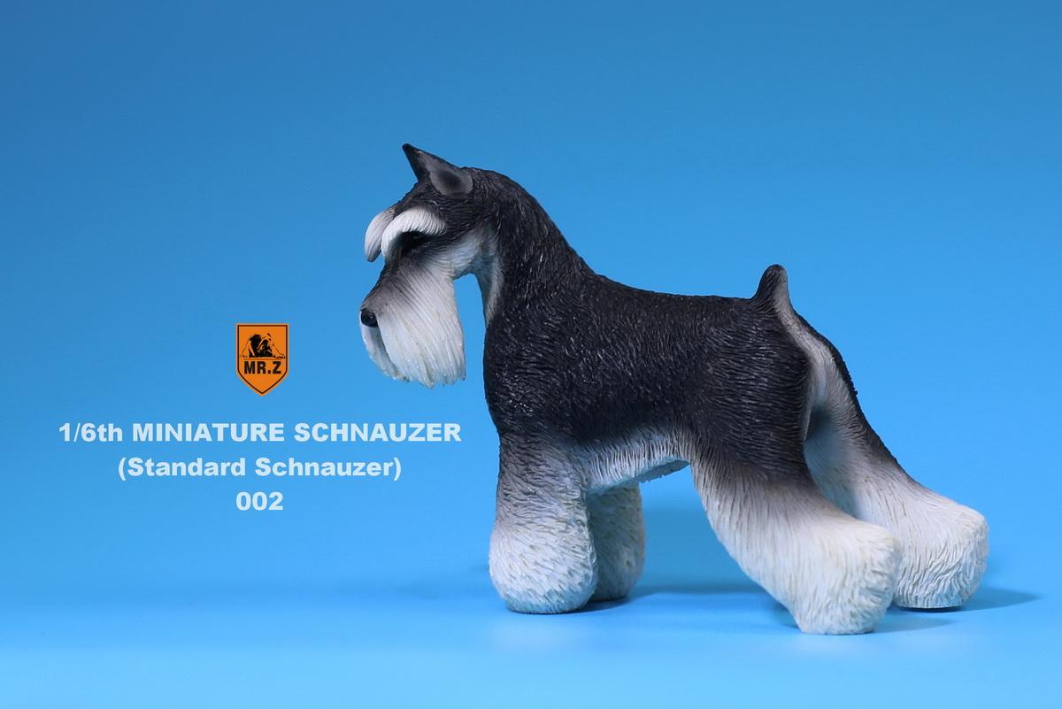 mrZ-schnauzer04