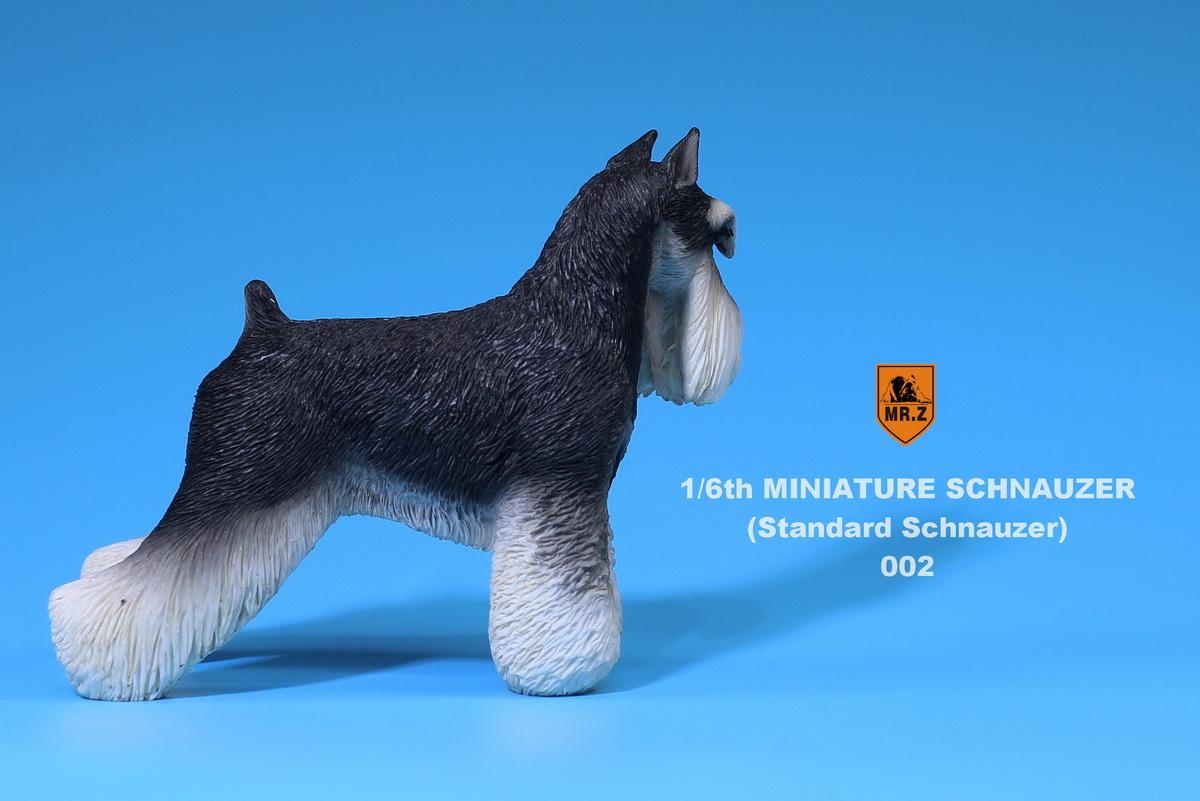 mrZ-schnauzer05
