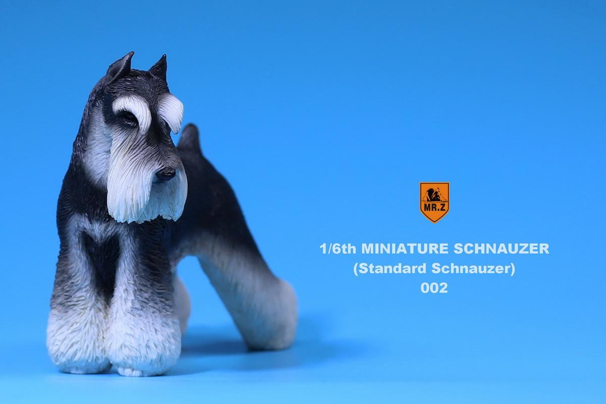 mrZ-schnauzer06