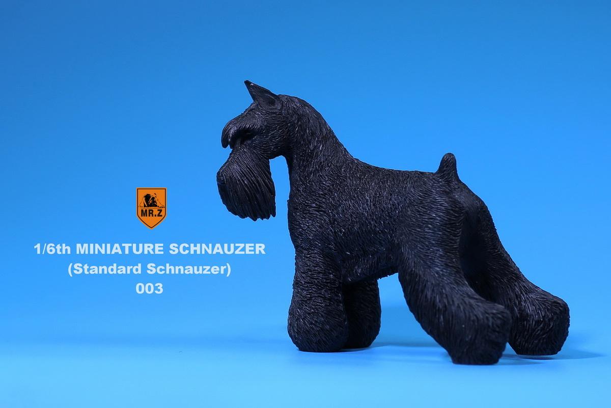 mrZ-schnauzer07