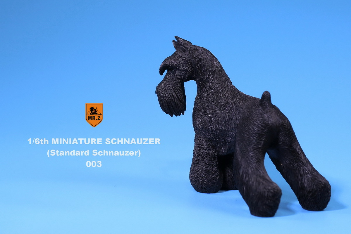 mrZ-schnauzer08