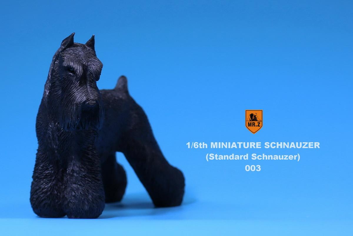 mrZ-schnauzer10