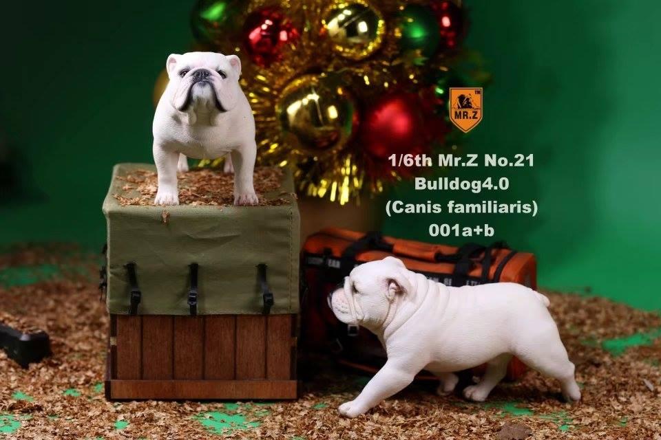 mrZ-brit bulldog01