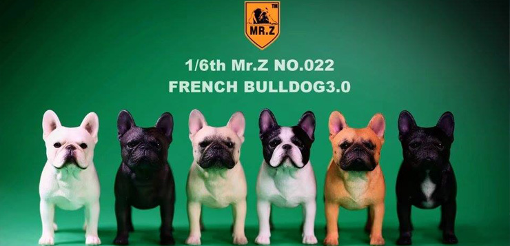 mrz-french-bulldog00