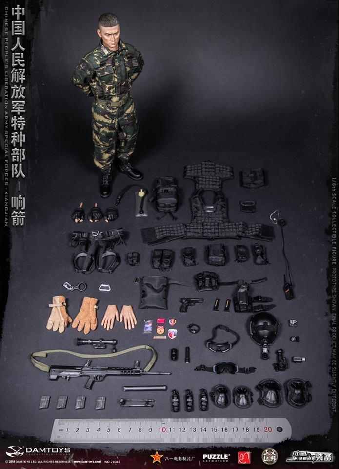 dam-chinese07
