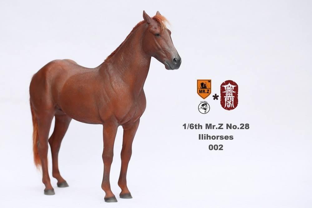 mrZ-ili04