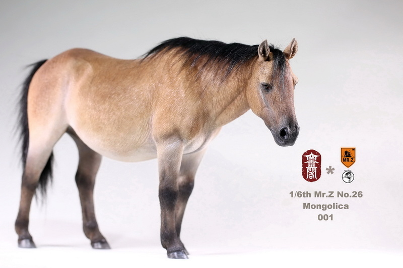 mrZ-mongol01