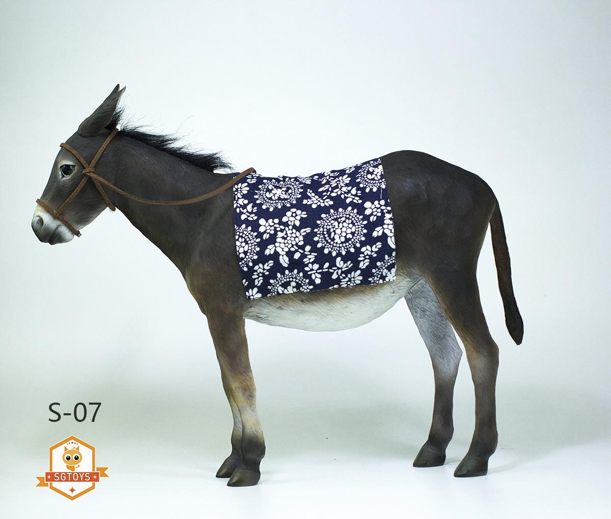 sg.donkey01