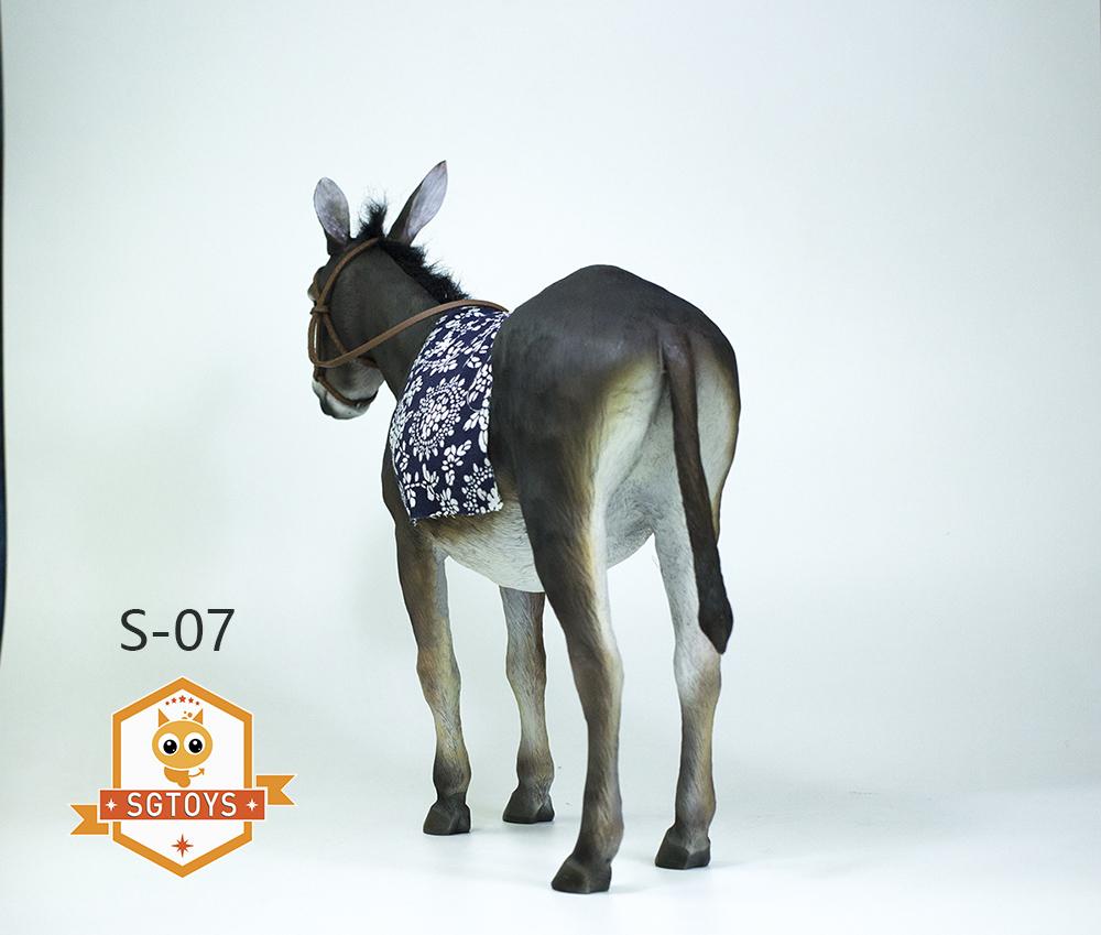 sg.donkey03