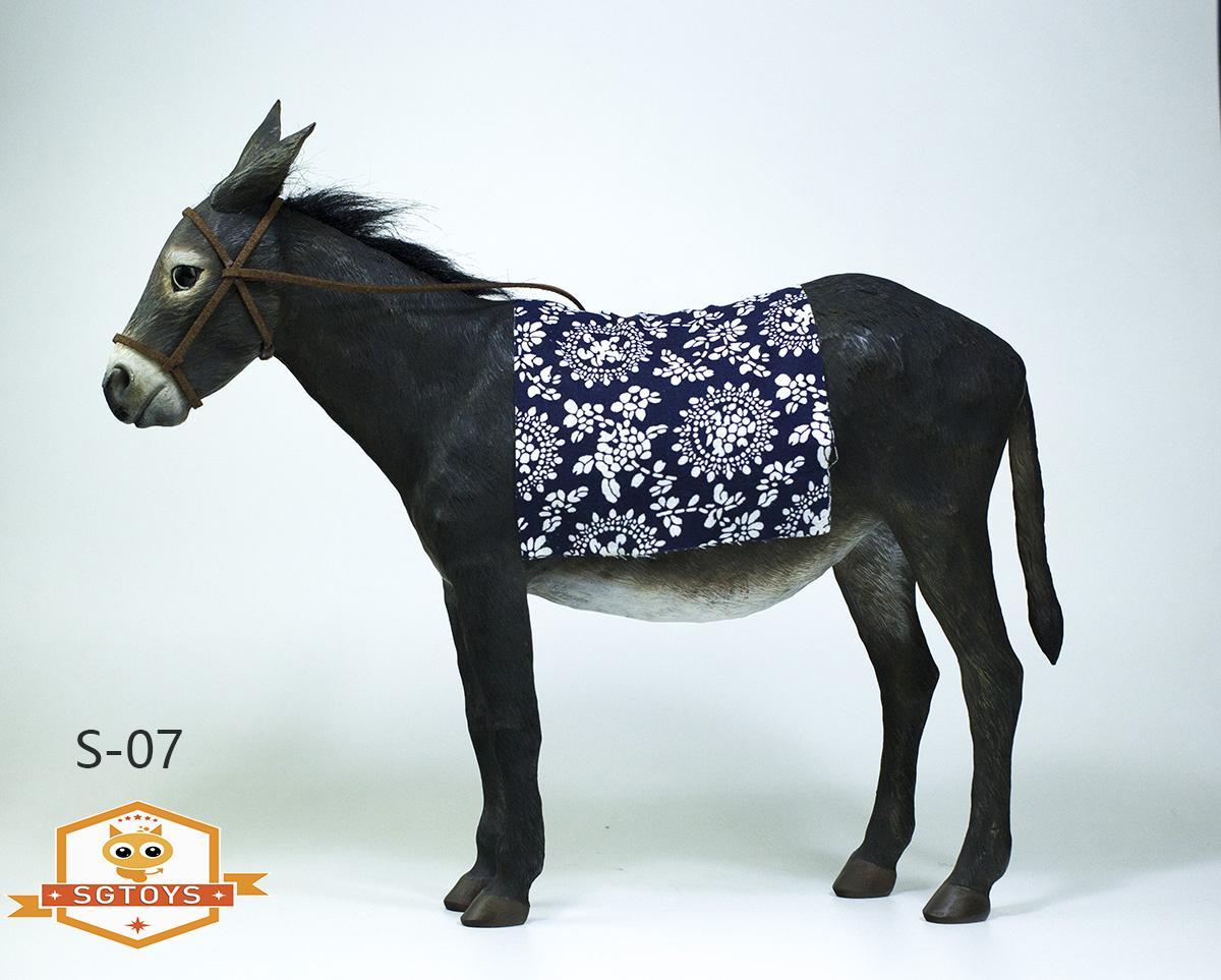 sg.donkey04