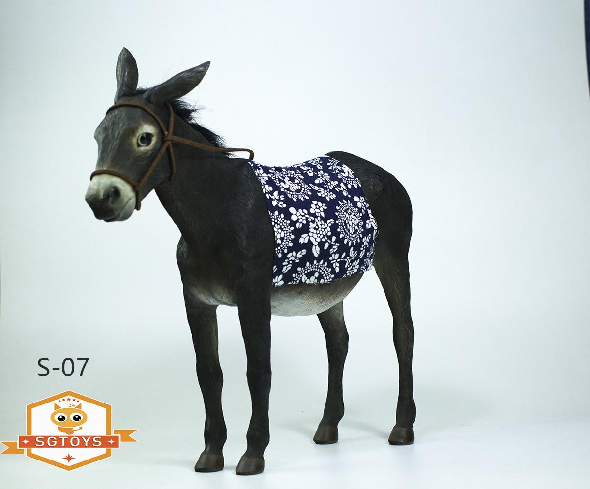 sg.donkey05