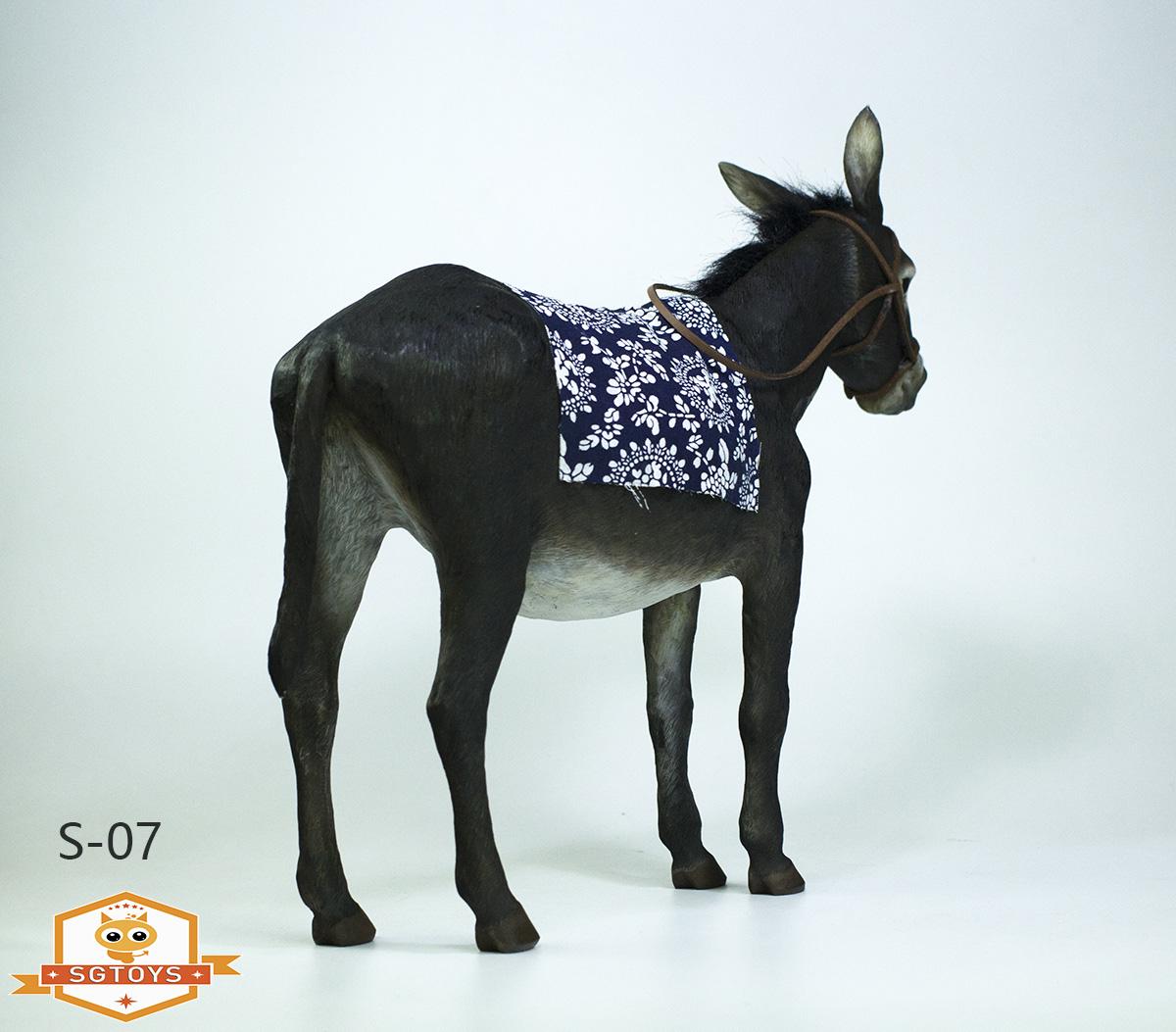 sg.donkey06