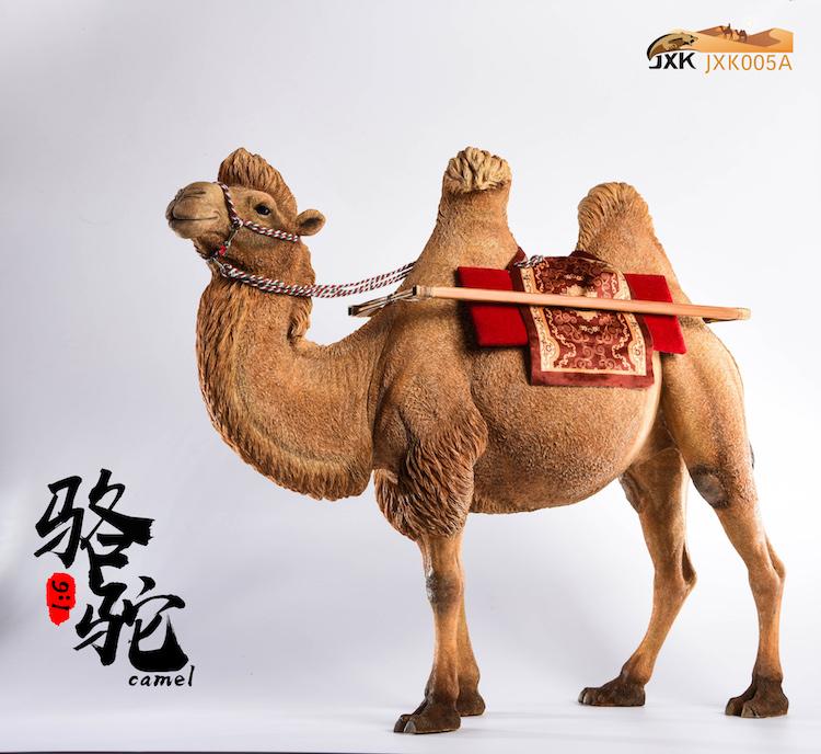 jxk-camel04
