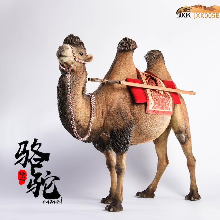 jxk-camel09