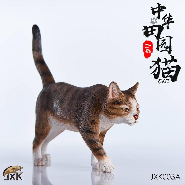 jxk-cats01