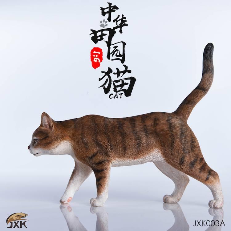 jxk-cats02