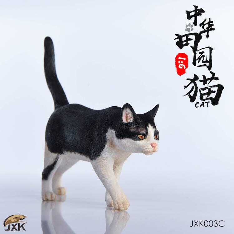 jxk-cats04