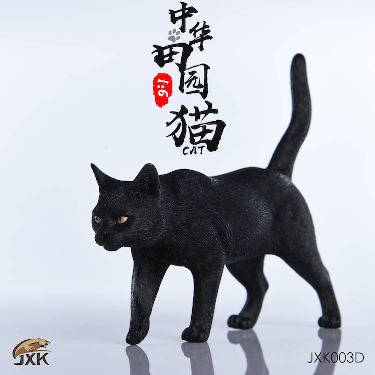 jxk-cats05