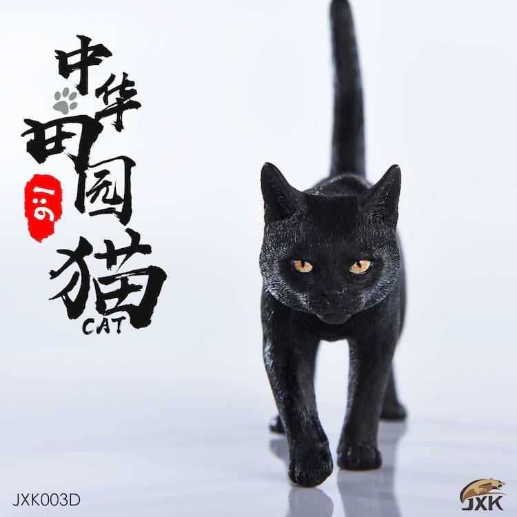 jxk-cats06