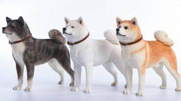 jxk-dog007-00